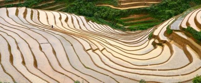 Ruộng bậc thang Mù Cang Chải vào mùa nước đổ